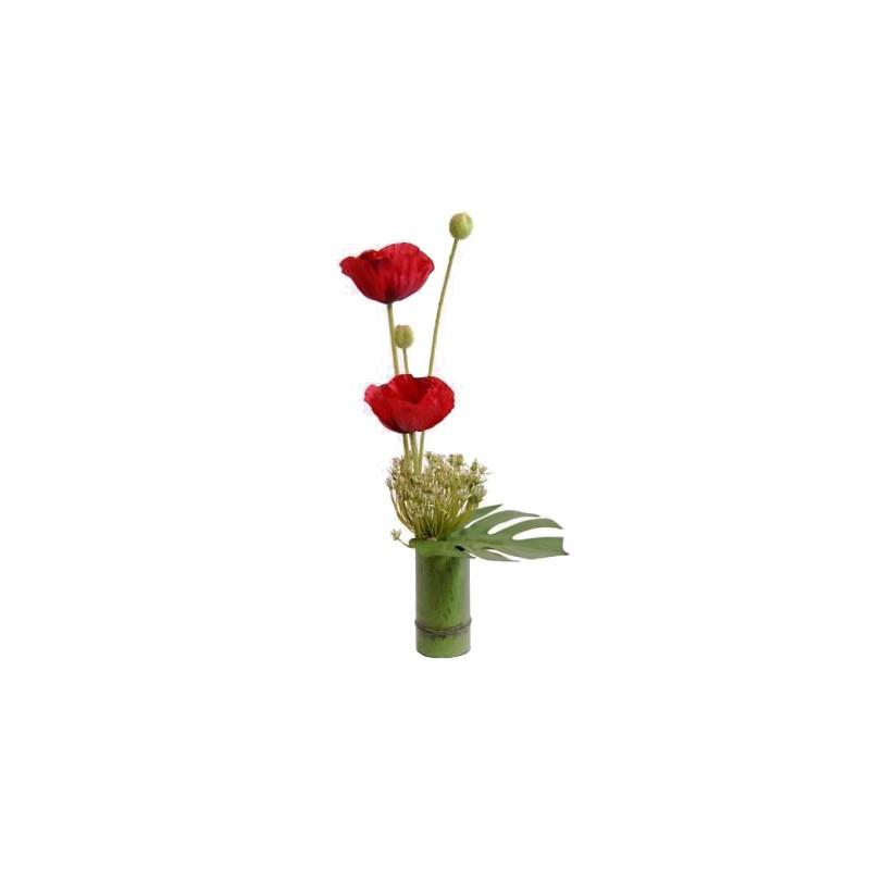 Compo frand modèle Bamboo Pavot