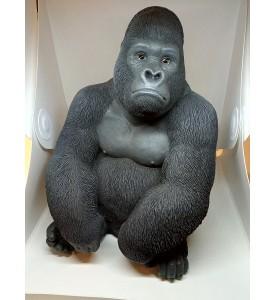 Gorille Faune